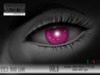 Nocturnal : Eyes_Bold Love