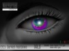 Nocturnal : Eyes_Darken Rainbow