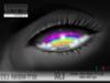 Nocturnal : Eyes_Rainbow Pride