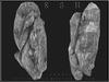 T-3D Creations [ 2 Rocks ] MESH - Full Perm -