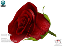 ^;^CaTwA^;^ Sandy Single One Red Rose