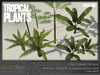 NEW! Tropical Plants Pack #1 from Studio Skye 100%Mesh