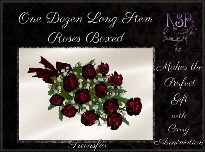 NSP One Dozen Long Stem Roses (Red) Boxed