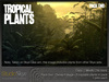 Tropical plants pack 7