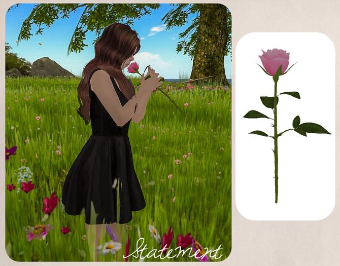 Single Rose - animated (Pink)