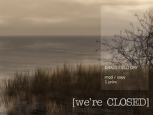 [we're CLOSED] grass field dry