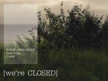 [we're CLOSED] shrub large green