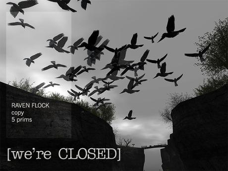 [we're CLOSED] raven flock - copy
