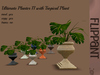 Ultimate Color Change Planter II with Tropical Plant