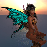 Miro Wings Flexy, Flap, Color Change