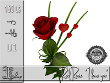 "Red Rose ""I love you"" MC"