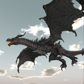 flying dragons on touch 26 p copy