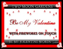 BE MY VALENTINE - MESH WORDING WITH FIREWORKS