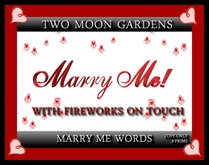 MARRY ME - MESH WORDING WITH FIREWORKS