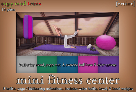 [croire] Mini Fitness Center (kickboxing stand, yoga mat, exercise ball with 8 animations and color options)