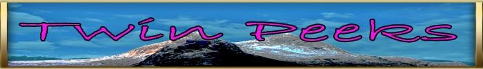 Twin peeks mp logo