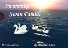 Swimming Swan Family (copy)