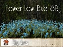 Flower Low Blue SR