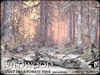 Wildwood giant deep forest pines winter a2
