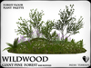 Wildwood giant  pine forest base mod palette 1