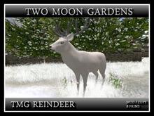 TMG REINDEER*