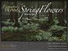 Skye enchanted woods spring flower2