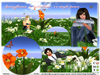 White/orange spring flowers with butterflies 11single poses