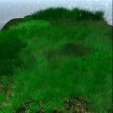 alive grass 1 - 3 prims