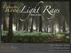 NEW  Enchanted Woods Light Rays Bolt-On Set