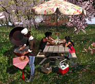 Aphrodite Spring BBQ complete set- Special for Summer as well!