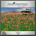 Pc pixel creations   field of tulips orange purple