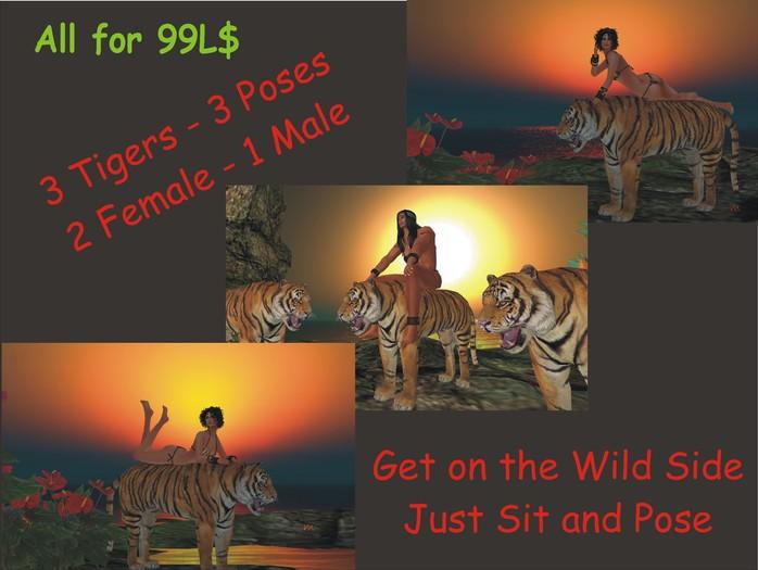 Mesh Tiger Pose Set #1