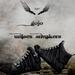 Gojo new sneakers black