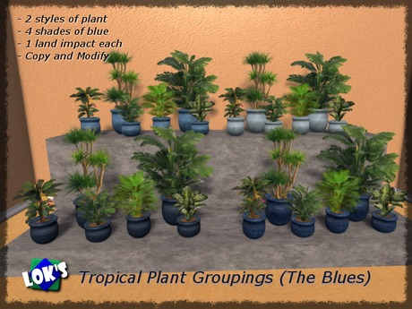 Lok's Tropical Plant Groupings (The Blues)