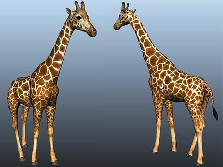 Giraffe - Mesh - Full Perm