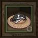 Feline Treasures - Naptime - Dk Grey Tabby L