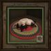 Feline Treasures - Naptime - Siamese d