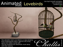 (Challis) Animated Love Birds (BOXED) (MC)