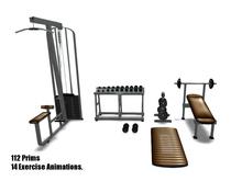 Fitness-Gym-Brown
