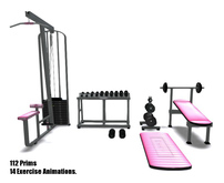 Fitness-Gym-Pink