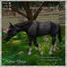 Animated Horse Grey
