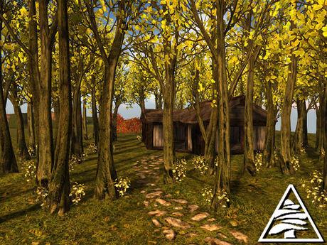 Beech forest C/M (4 LI) + full perm ground texture