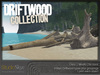 Driftwood collection 2