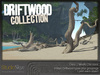 Driftwood collection 3