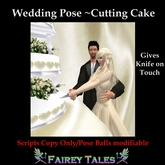 WEDDING POSE ~ CUT THE CAKE POSE
