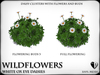 Wildflowers  ox eye daisies   ref 8