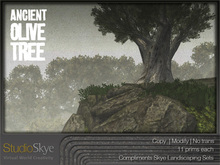 NEW! Ancient Olive Tree from Studio Skye 100%Mesh