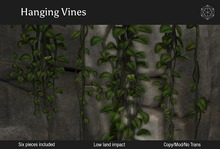 Vines Delivery Crate