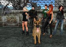 Verocity - Syndicate Group Pose