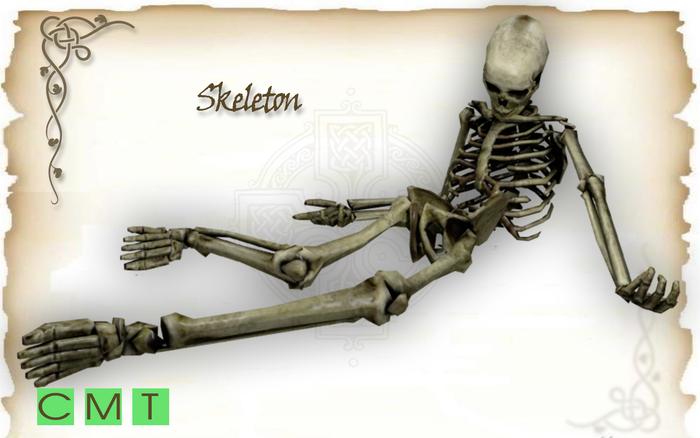 [MF] Mesh Skeleton corpse (boxed)